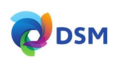 Logo-template-FiN-Website_0055_DSM